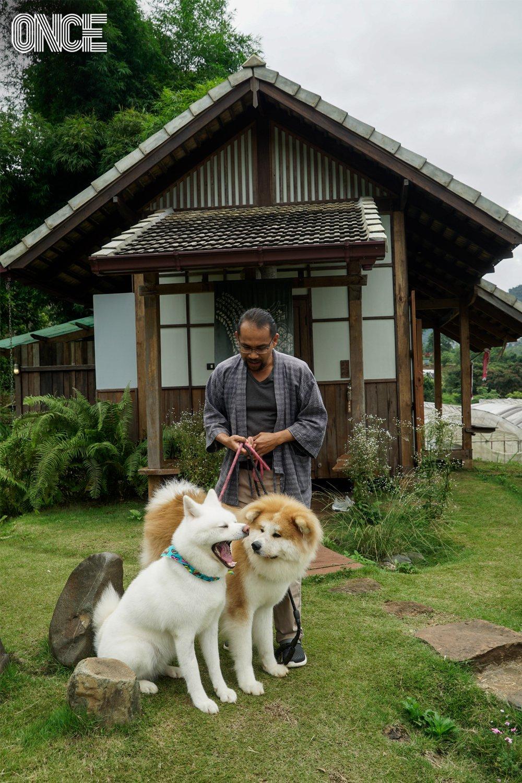 หมาอาคิตะ โมริฟาร์ม